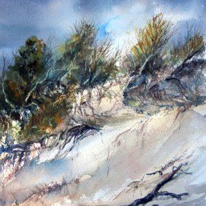 Bakers Beach Dunes, watercolour reproduction